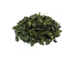Moringa Oleifera em Folhas a Granel